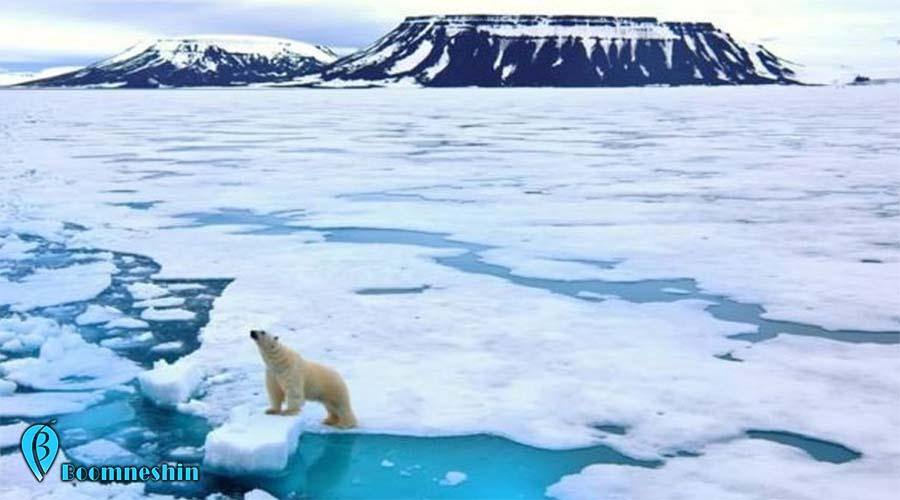 کرونا ویروس ناجی ده ها هزار نفر . همهگیری ویروس کرونا باعث کاهش فعالیت های اقتصادی در دنیا شده و گازهایی که در حمل و نقل و بخش انرژی تولید می شوند کاهش زیادی داشته است. به عقیده دانشمندان در ماه مه امسال تولید دی اکسید کربن به کمترین میزان خود در ده سال گذشته، یعنی از زمان آغاز بحران جهانی اقتصاد قبلی خواهد رسید.