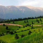 ۴ پیشنهاد برای جنگل نوردی در بهار
